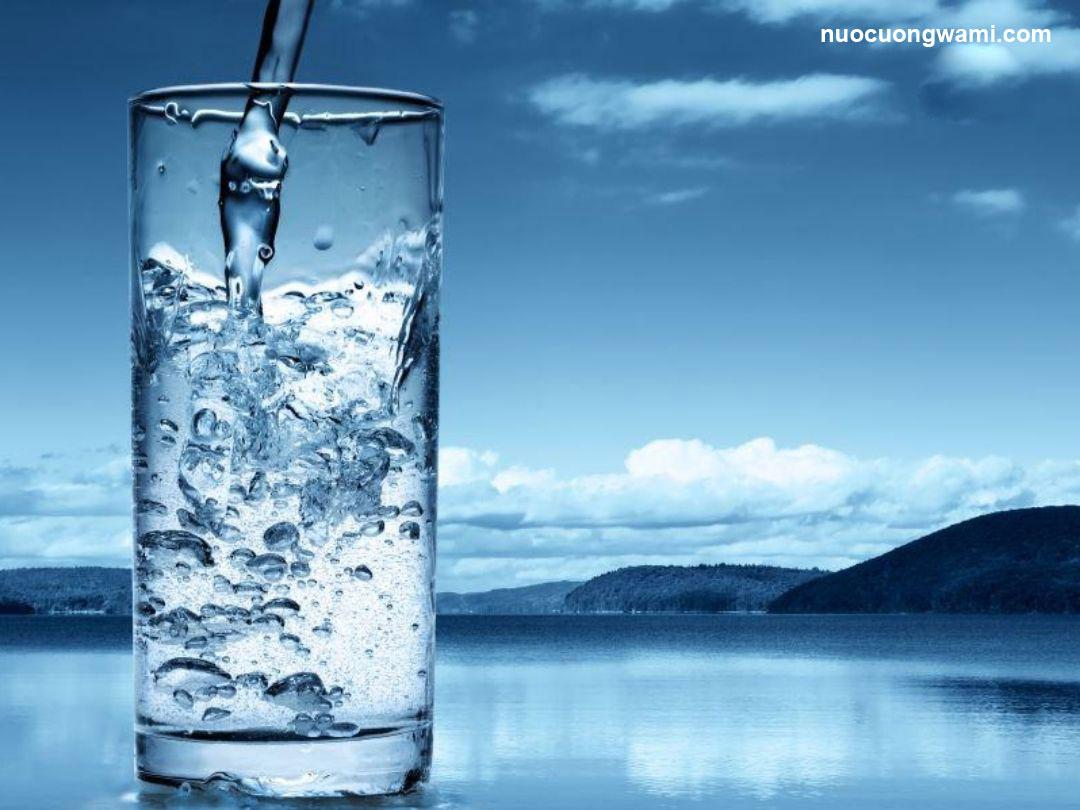 Nước tinh khiết Wami và Vihawa khác nhau như thế nào?